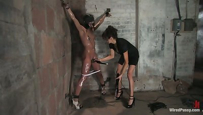 Angry mistress punishes tied up brunet whore Alyssa Reece in the matter of different sex toys